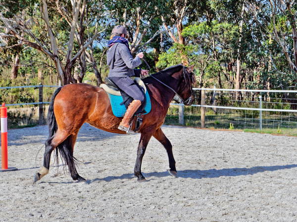 Sharryn-Yvonne-riding-80.jpeg