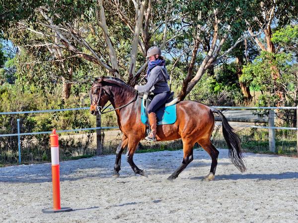 Sharryn-Yvonne-riding-81.jpeg