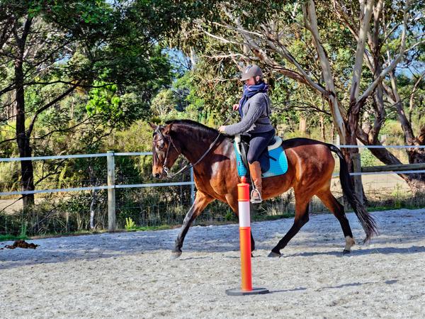 Sharryn-Yvonne-riding-82.jpeg