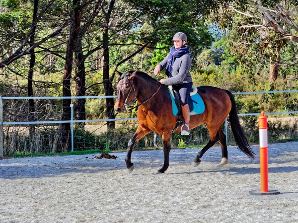 Sharryn-Yvonne-riding-83.jpeg