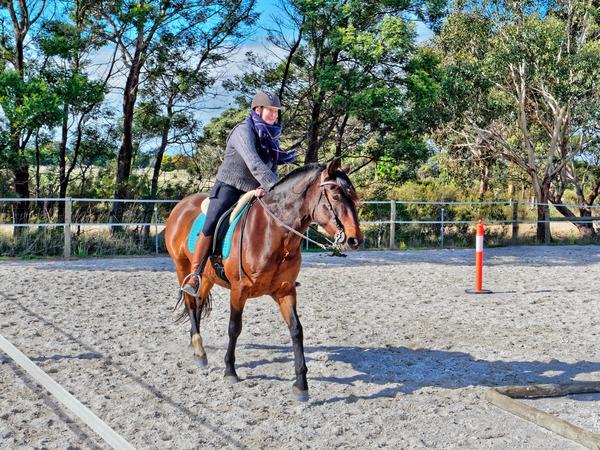 Sharryn-Yvonne-riding-89.jpeg