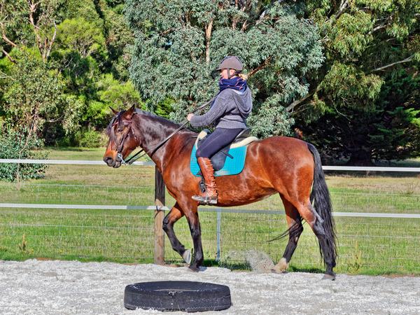 Sharryn-Yvonne-riding-91.jpeg