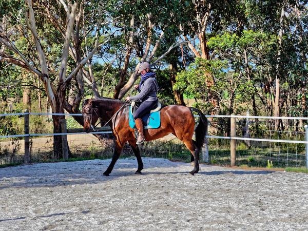 Sharryn-Yvonne-riding-94.jpeg