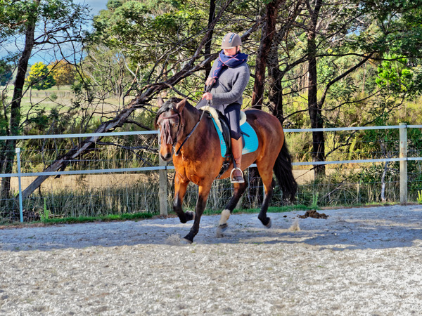 Sharryn-Yvonne-riding-97.jpeg