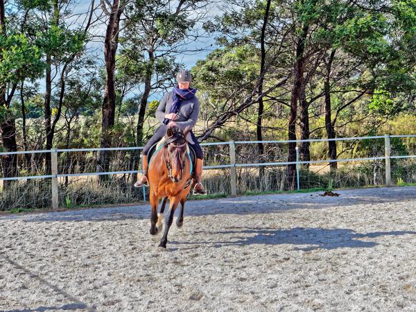 Sharryn-Yvonne-riding-98.jpeg
