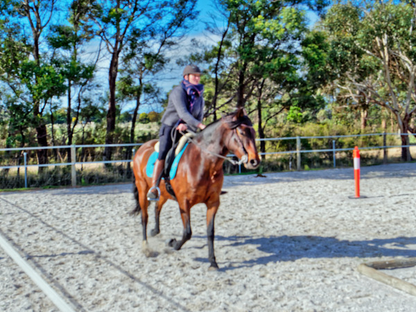 Sharryn-Yvonne-riding-99.jpeg