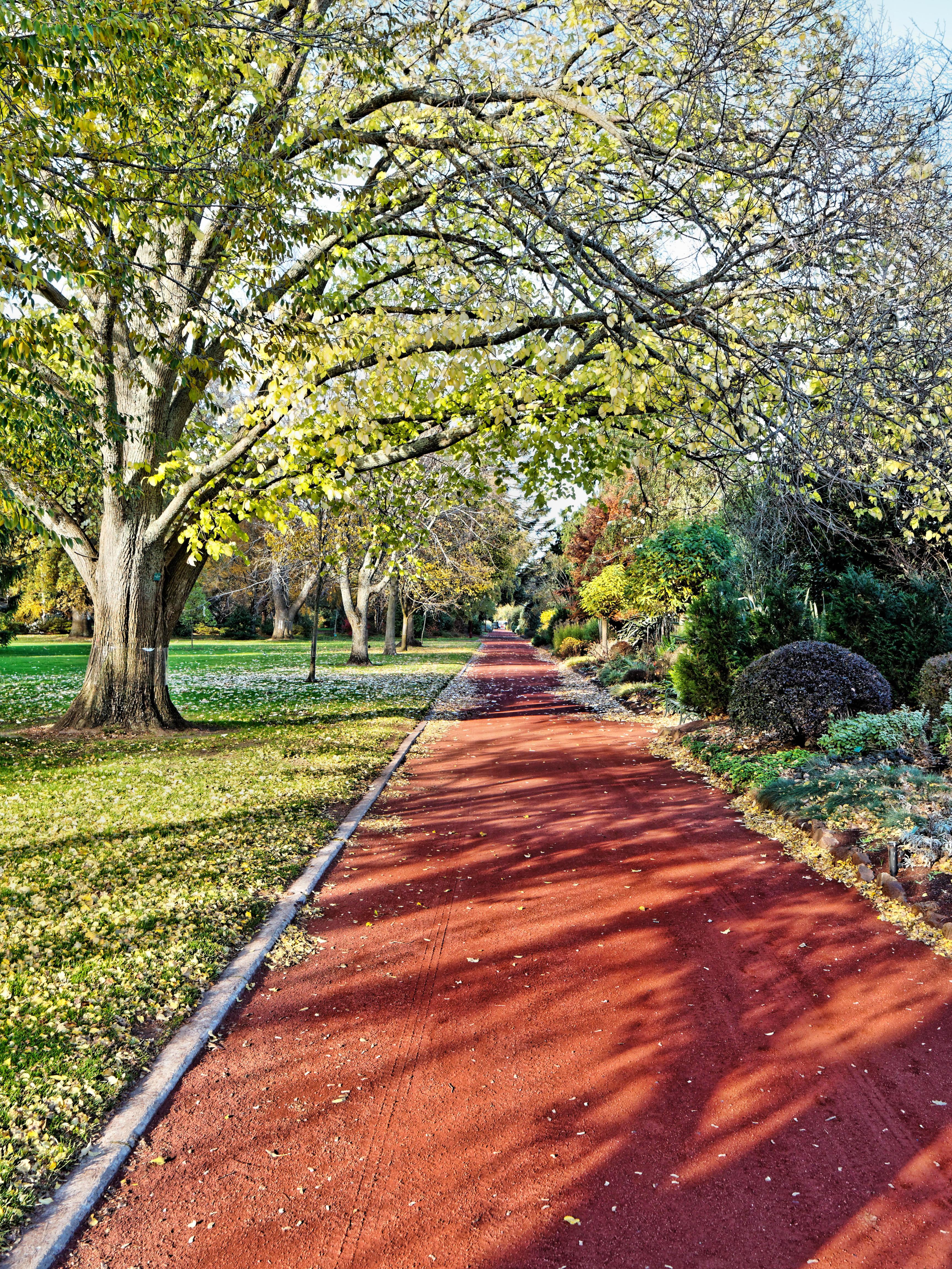Botanical-gardens-13.jpeg