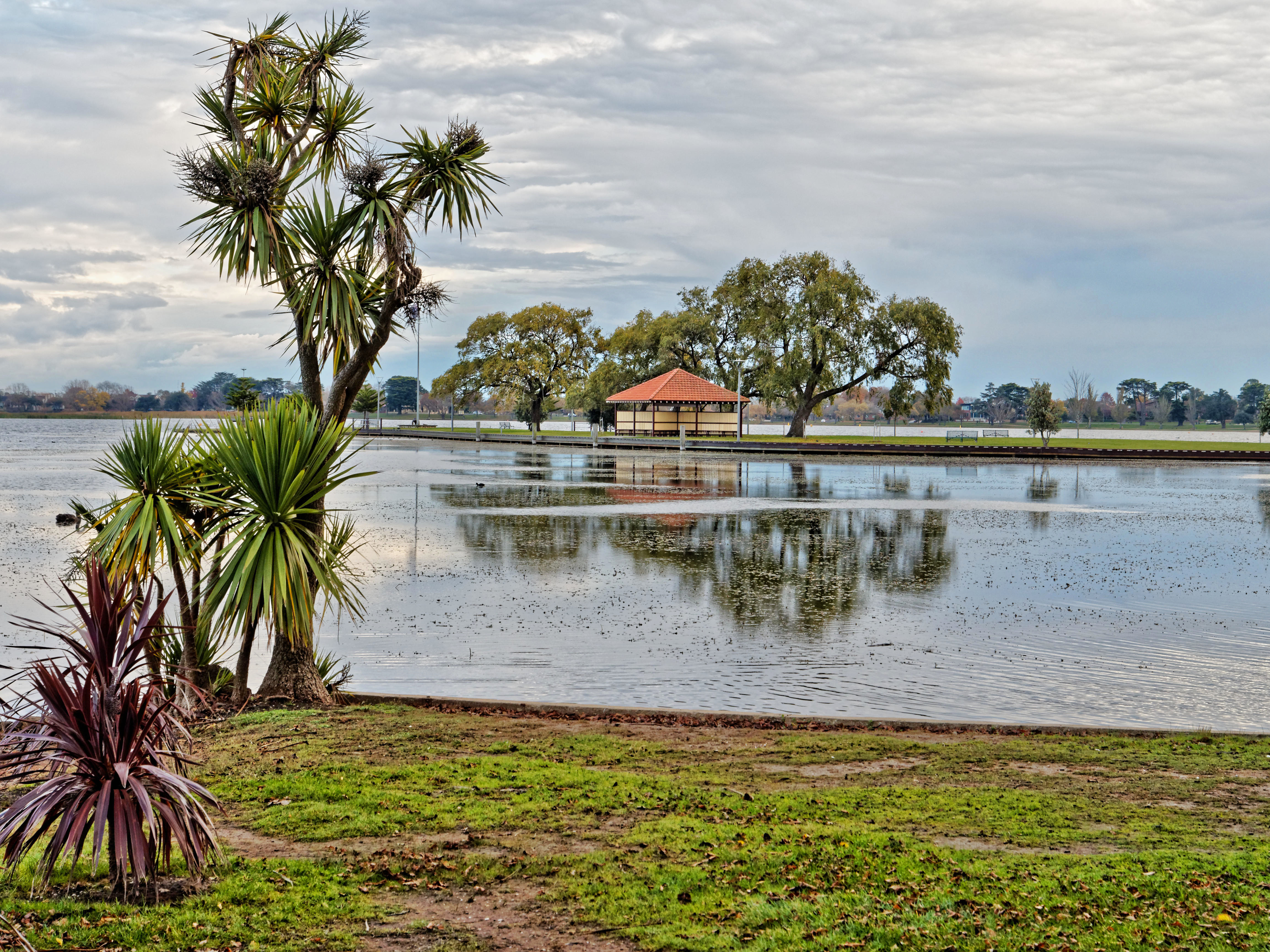 Lake-Wendouree-16.jpeg