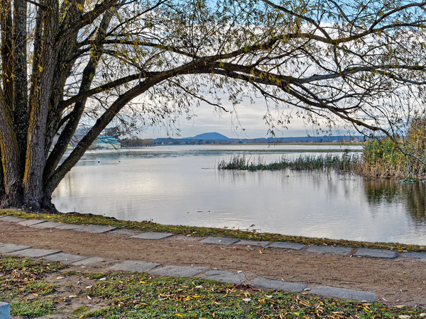 Lake-Wendouree-30.jpeg
