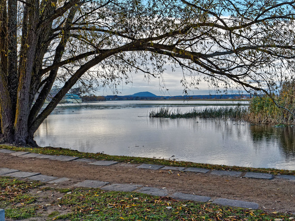 Lake-Wendouree-31.jpeg