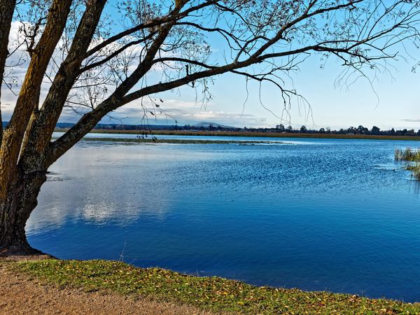 Lake-Wendouree-34.jpeg