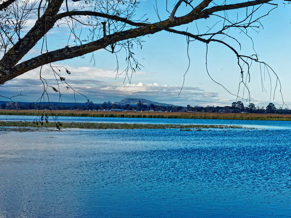 Lake-Wendouree-35.jpeg