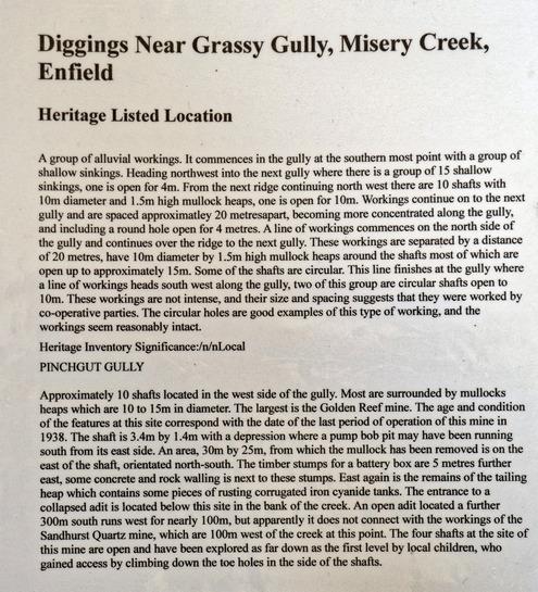 Grassy-Gully-Diggings.jpeg