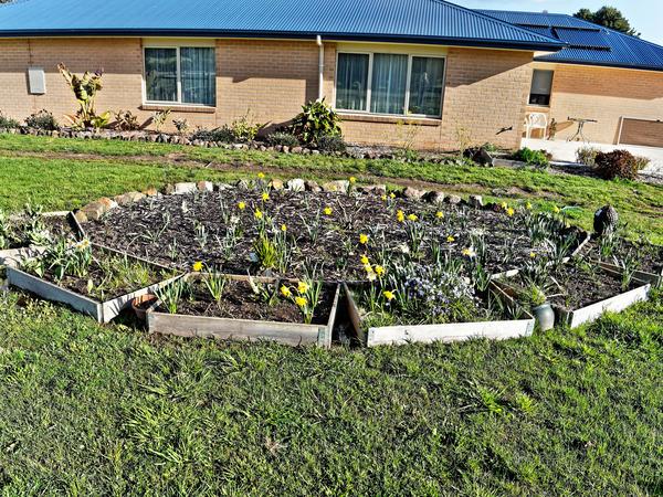 Garden-bed-1.jpeg