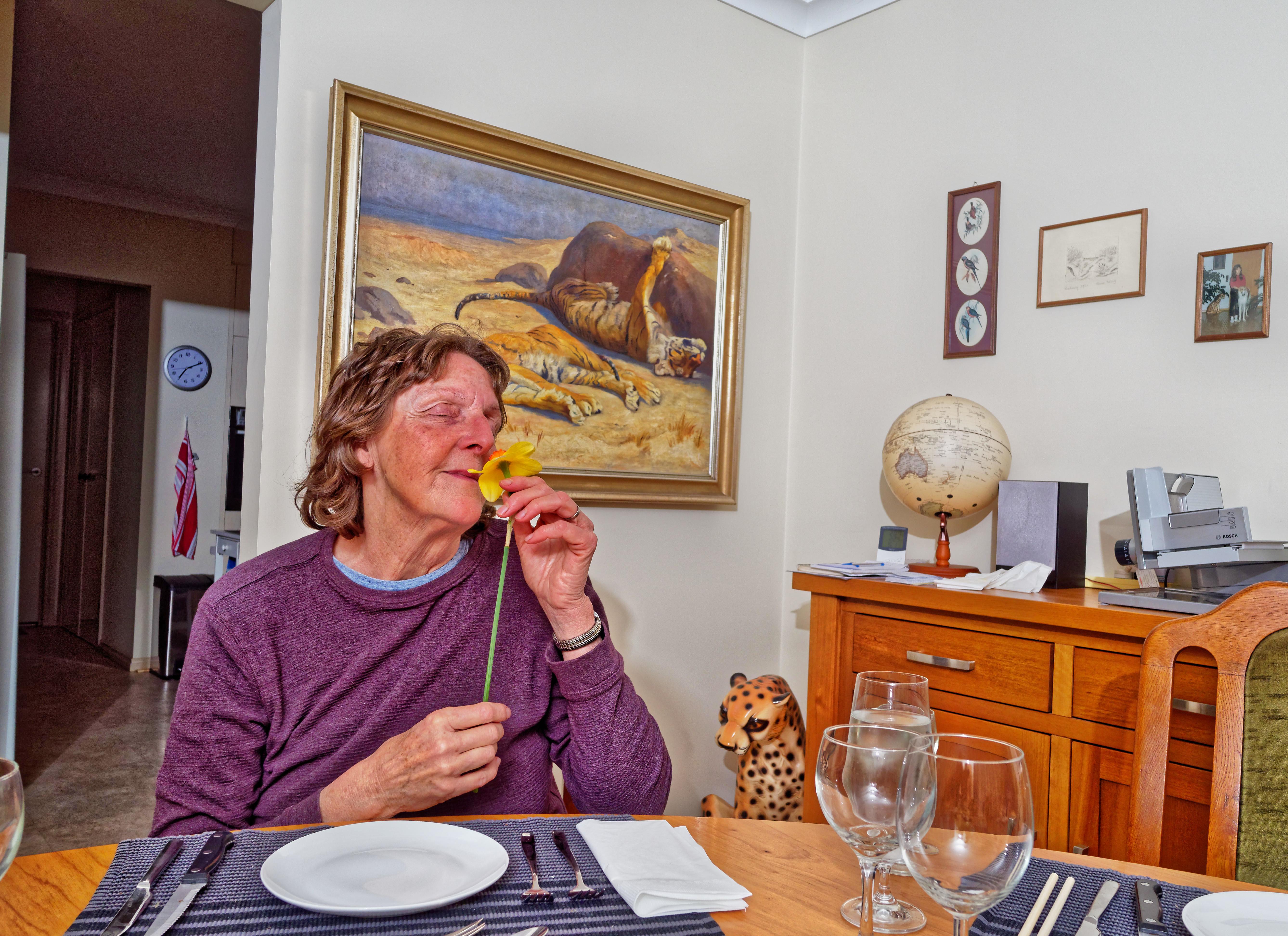 Dinner-panorama-10.jpeg