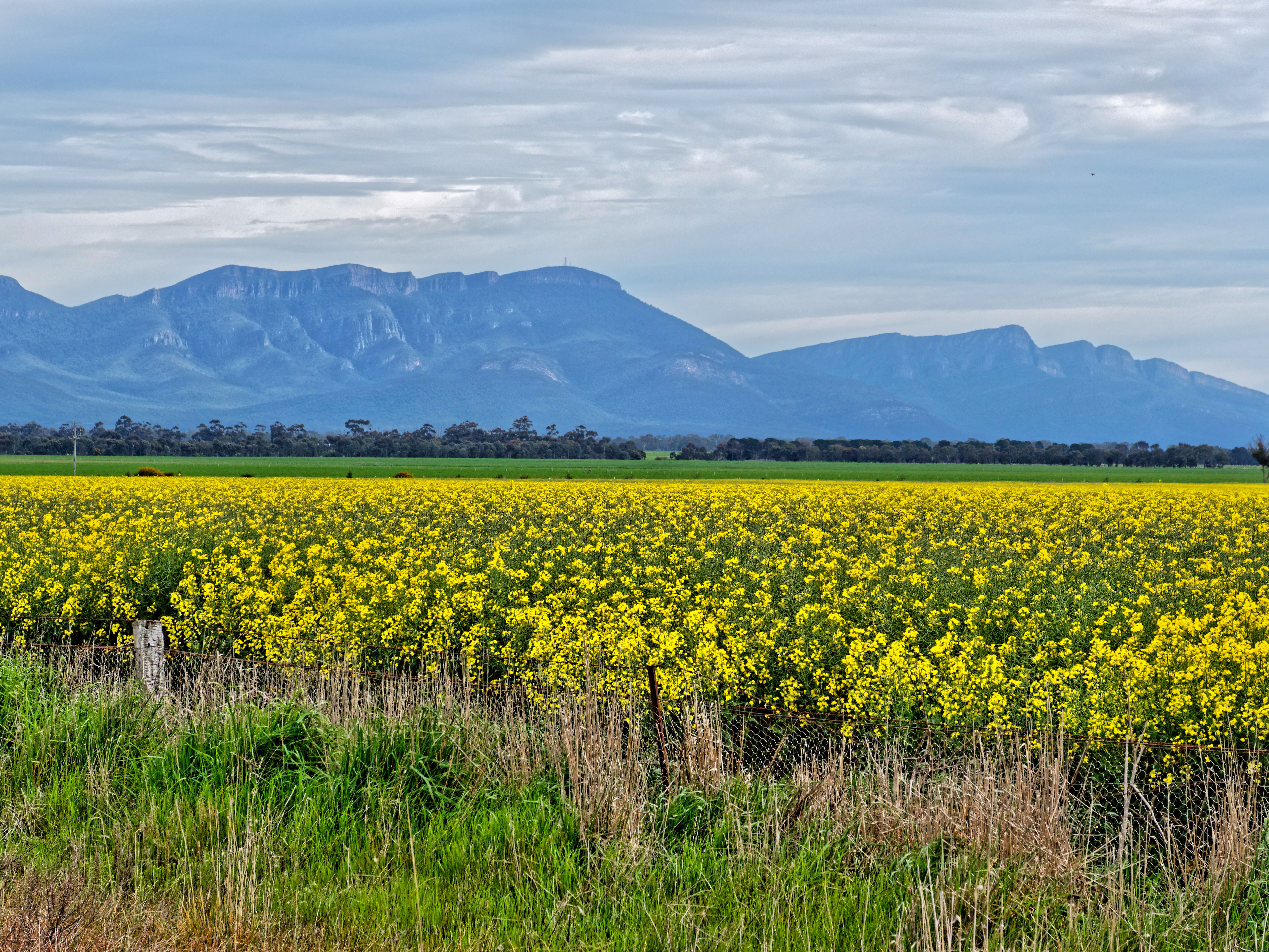 This should be Grampians-2-8.jpeg.  Is it missing?
