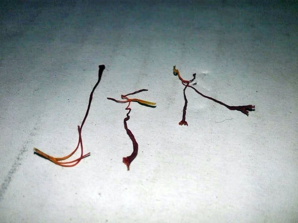 Saffron-1.jpeg