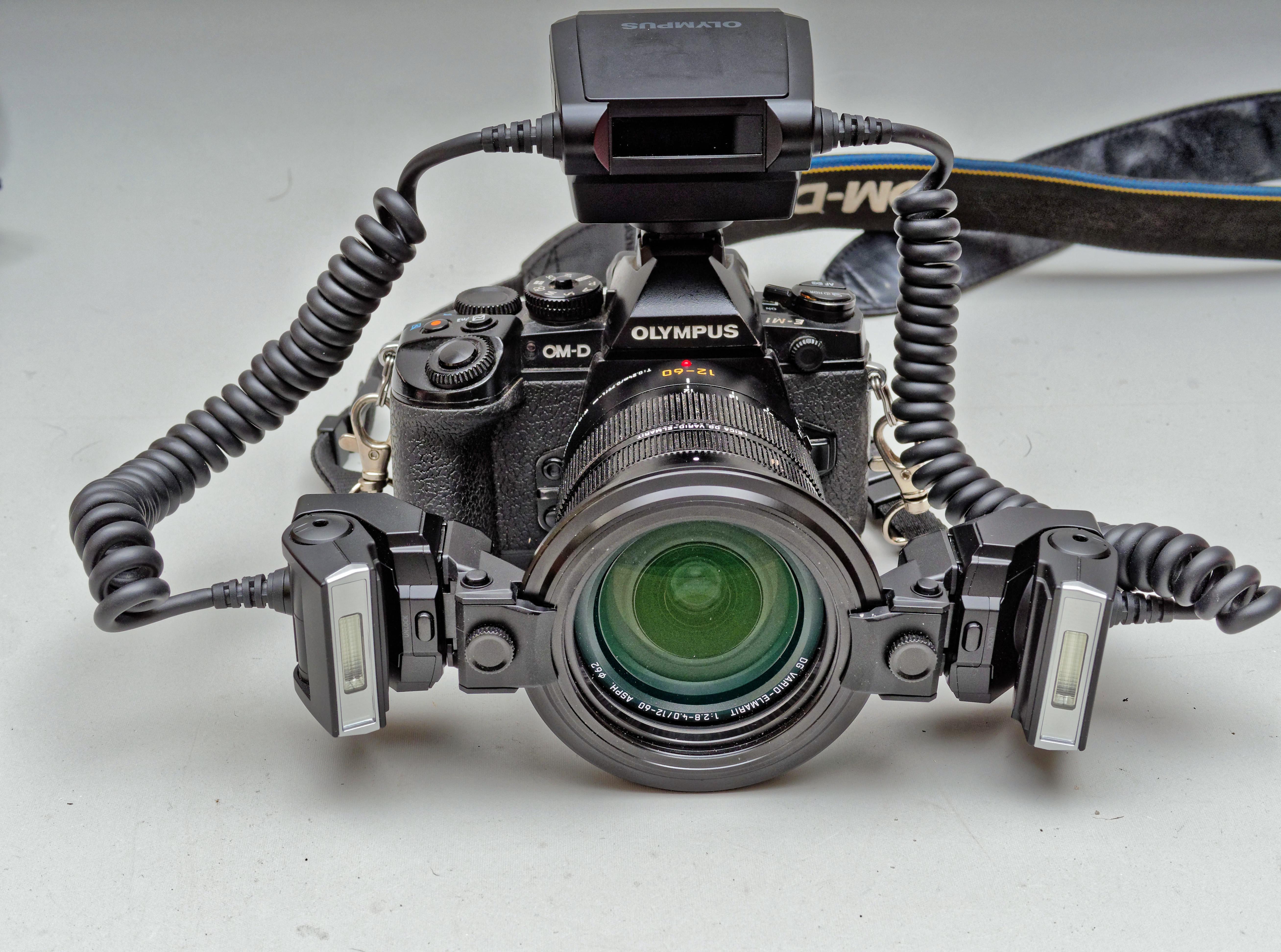 STF-8-1.jpeg