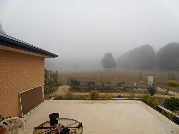 Fog-under-200-m.jpeg