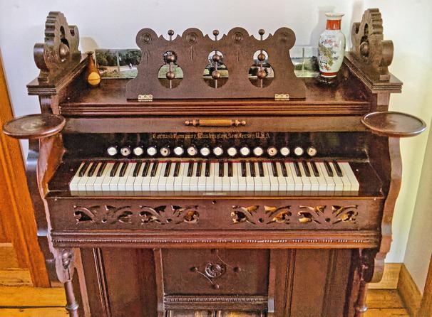 Organ-1.jpeg