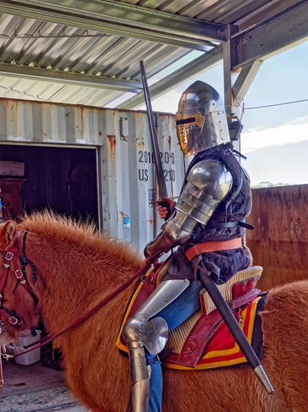 Knights-56.jpeg