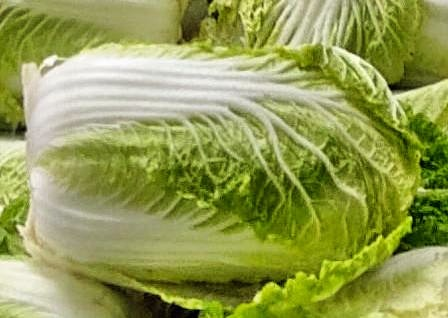Cabbages-detail-3.jpeg