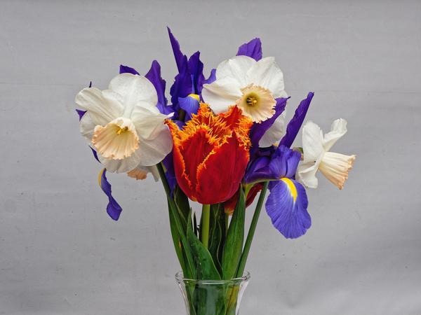 Flowers-5-DMap.jpeg