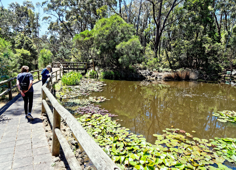 Ballarat-Bird-World-50.jpeg
