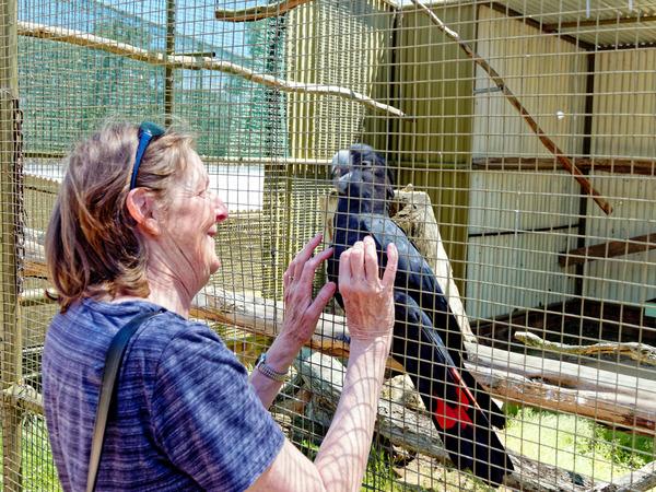 Ballarat-Bird-World-15.jpeg