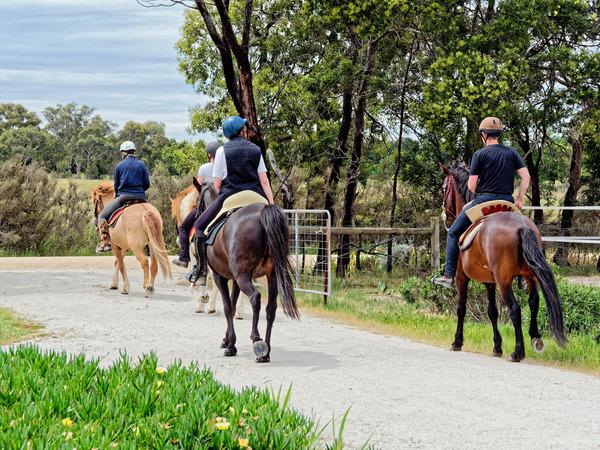 Four-riders-27.jpeg