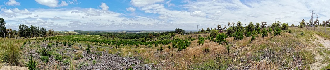 Ballarat-landscape-1.jpeg
