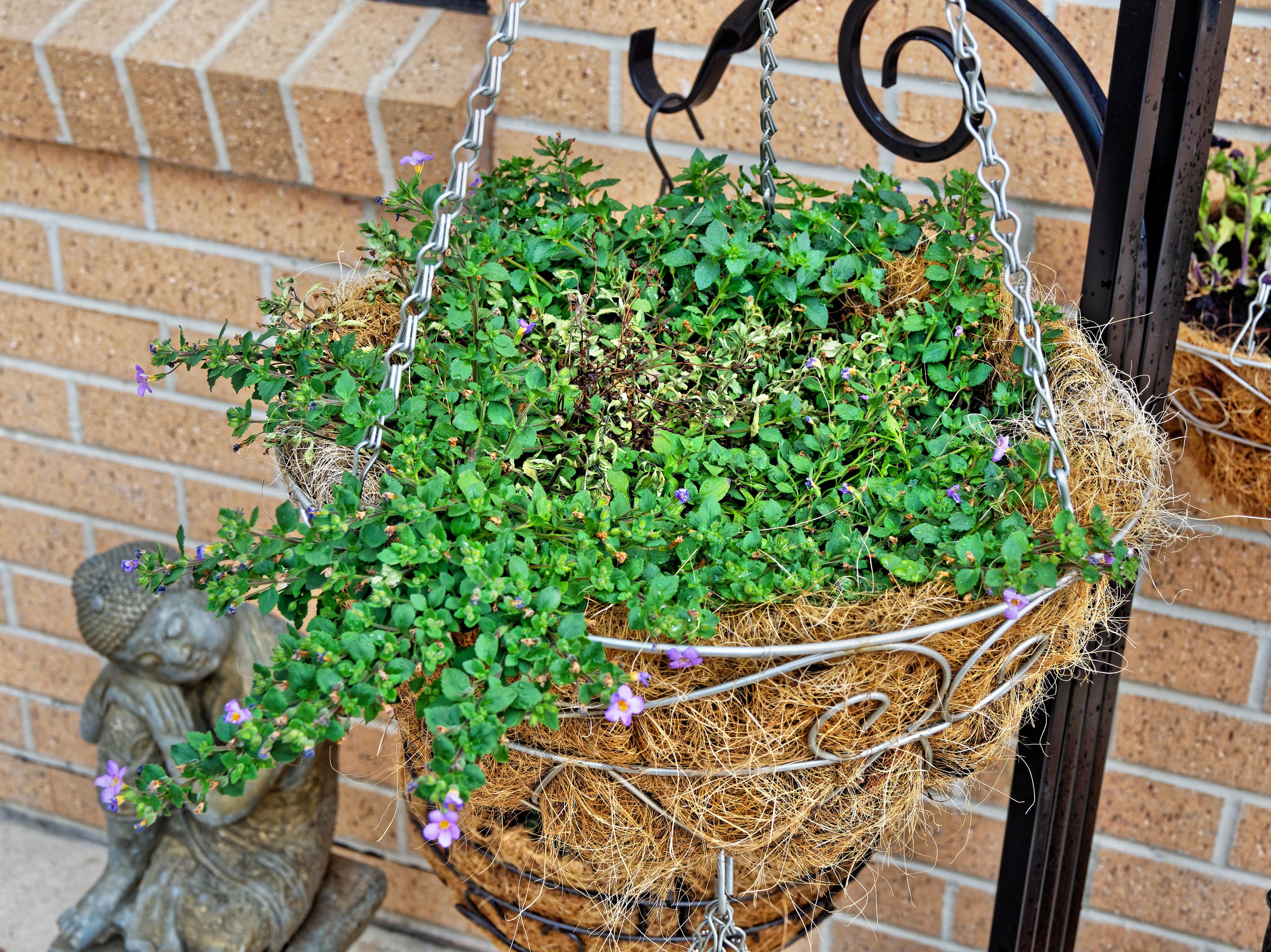 Flower-baskets-6.jpeg
