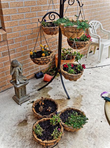 Flower-baskets-1.jpeg