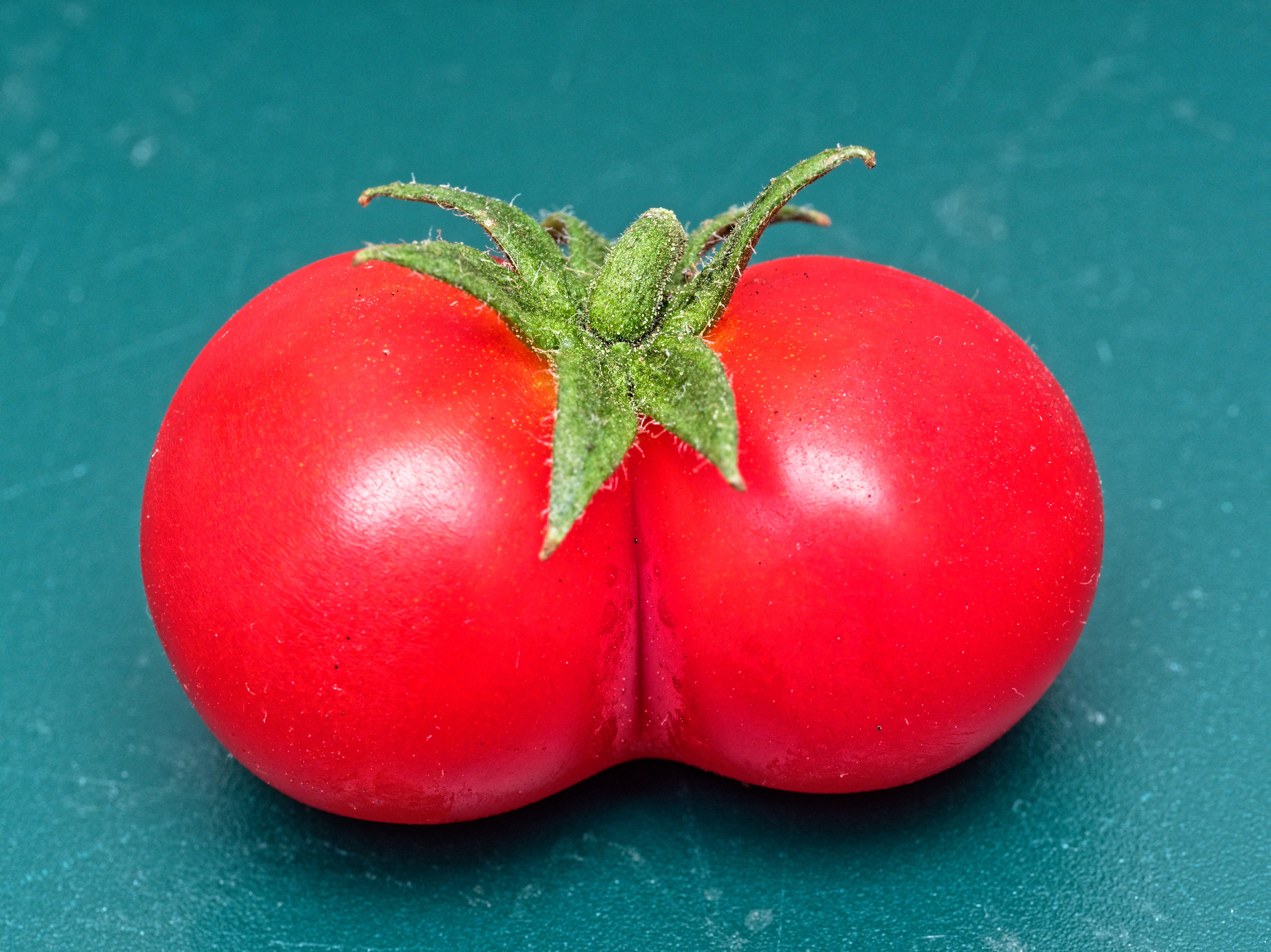This should be Twin-tomato-2.jpeg.  Is it missing?