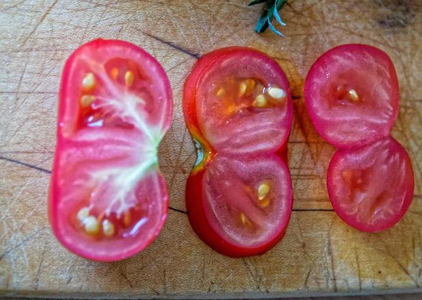 Twin-tomato.jpeg
