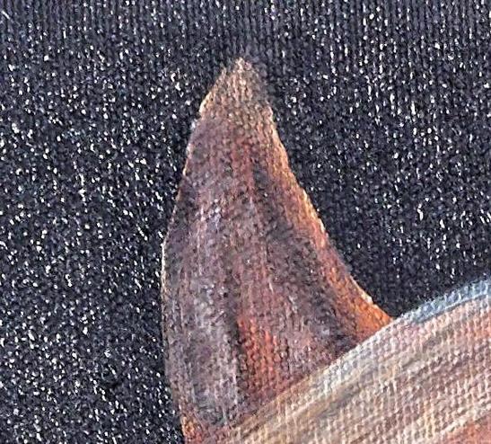 Skjomi-2-detail.jpeg
