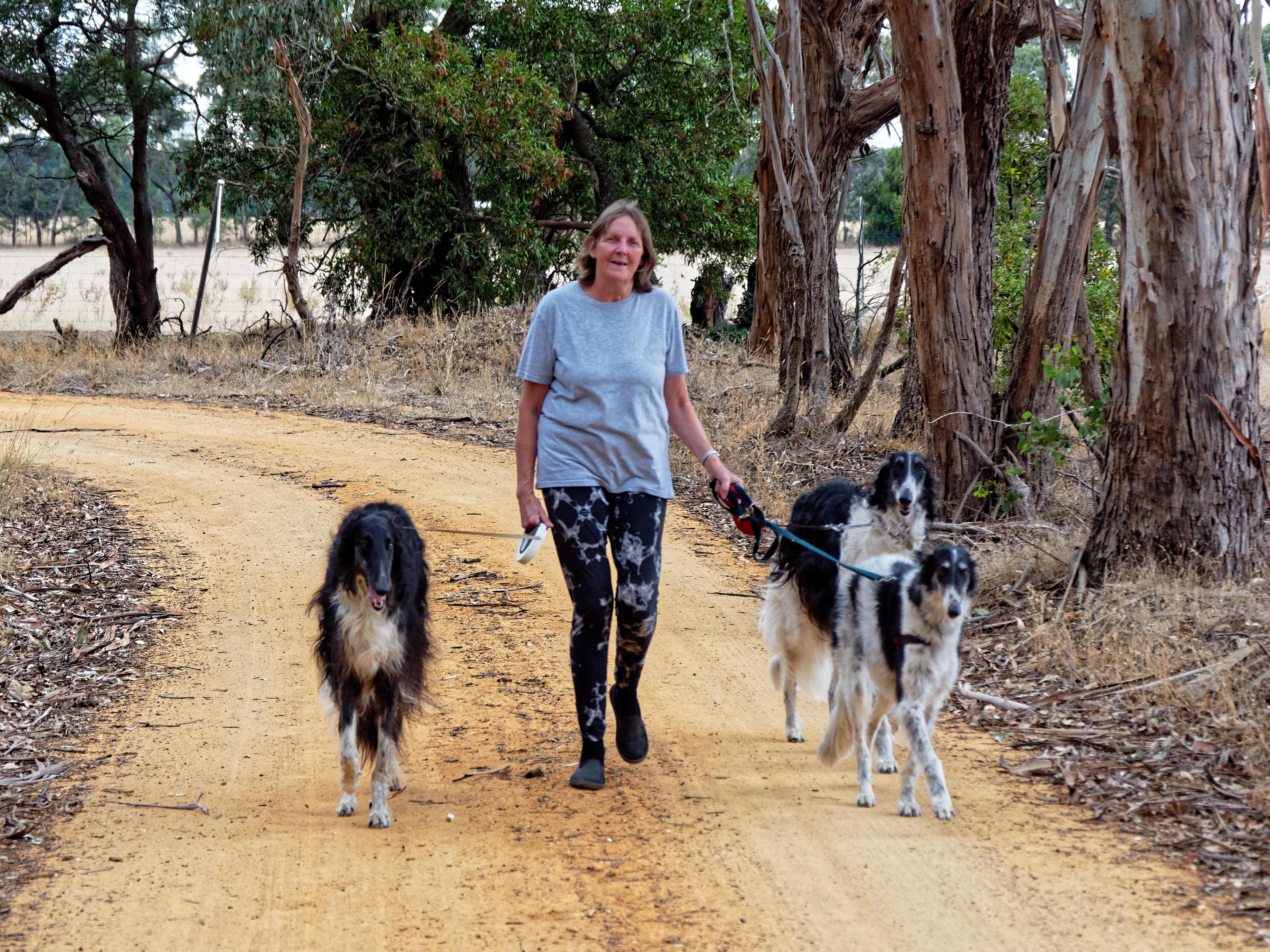 Walking-dogs-112.jpeg