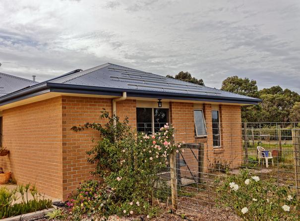 Solar-panels-3.jpeg