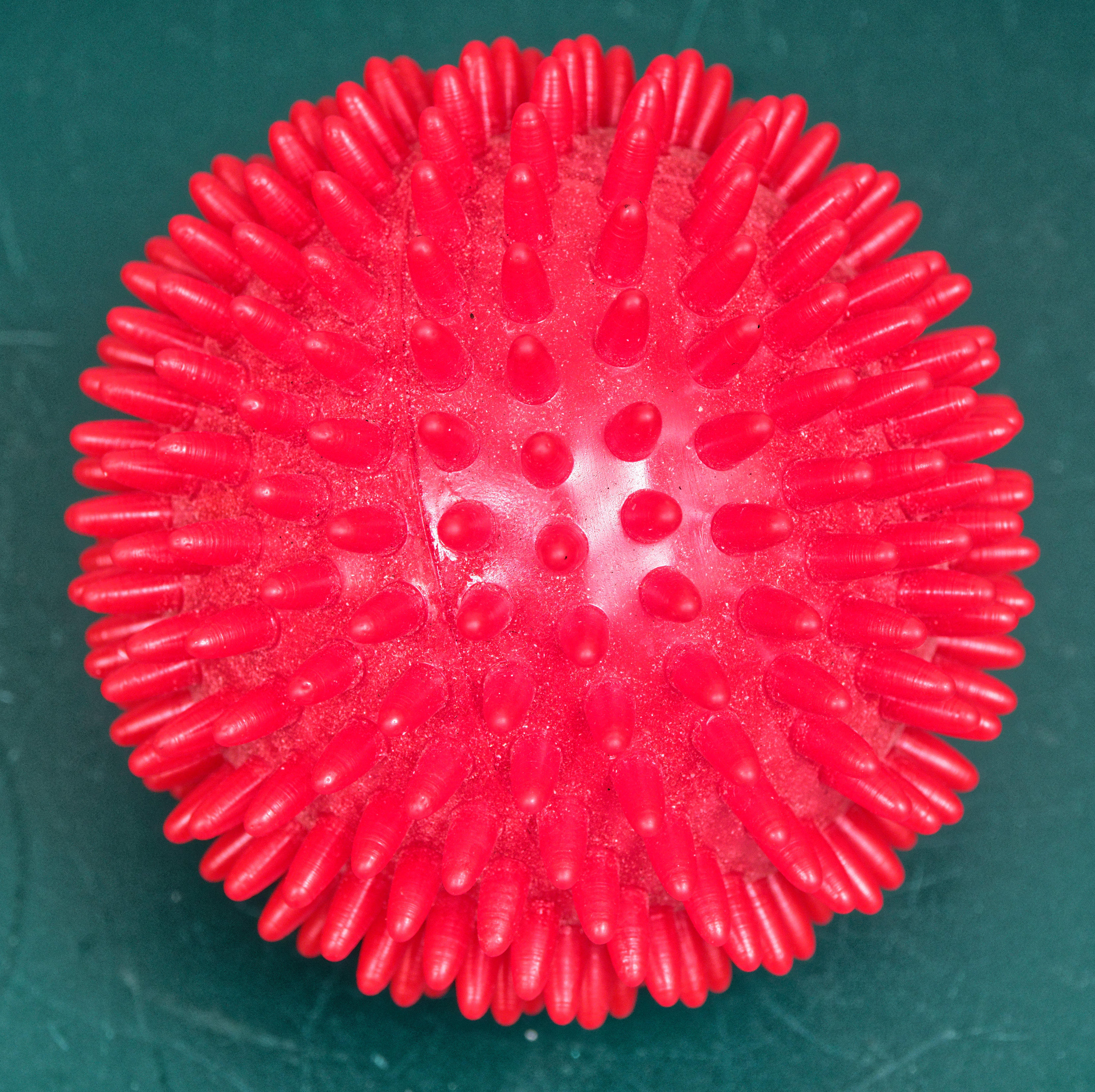 This should be Blowfish-ball.jpeg.  Is it missing?