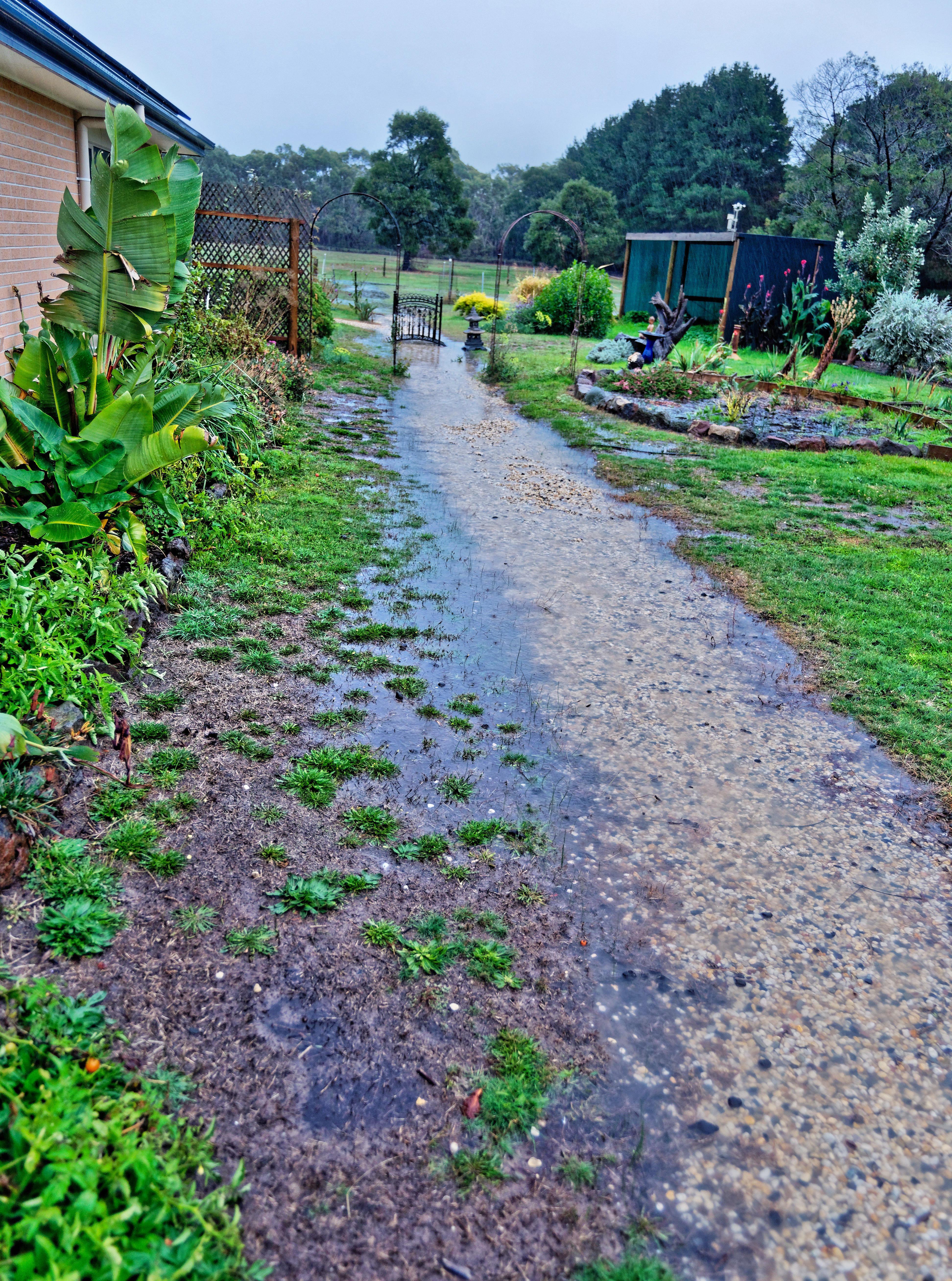 Rain-7.jpeg