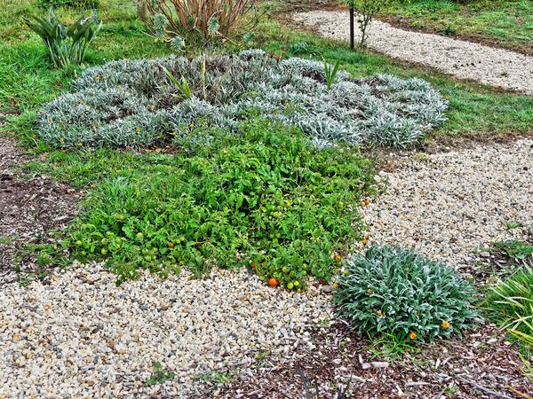 West-garden.jpeg