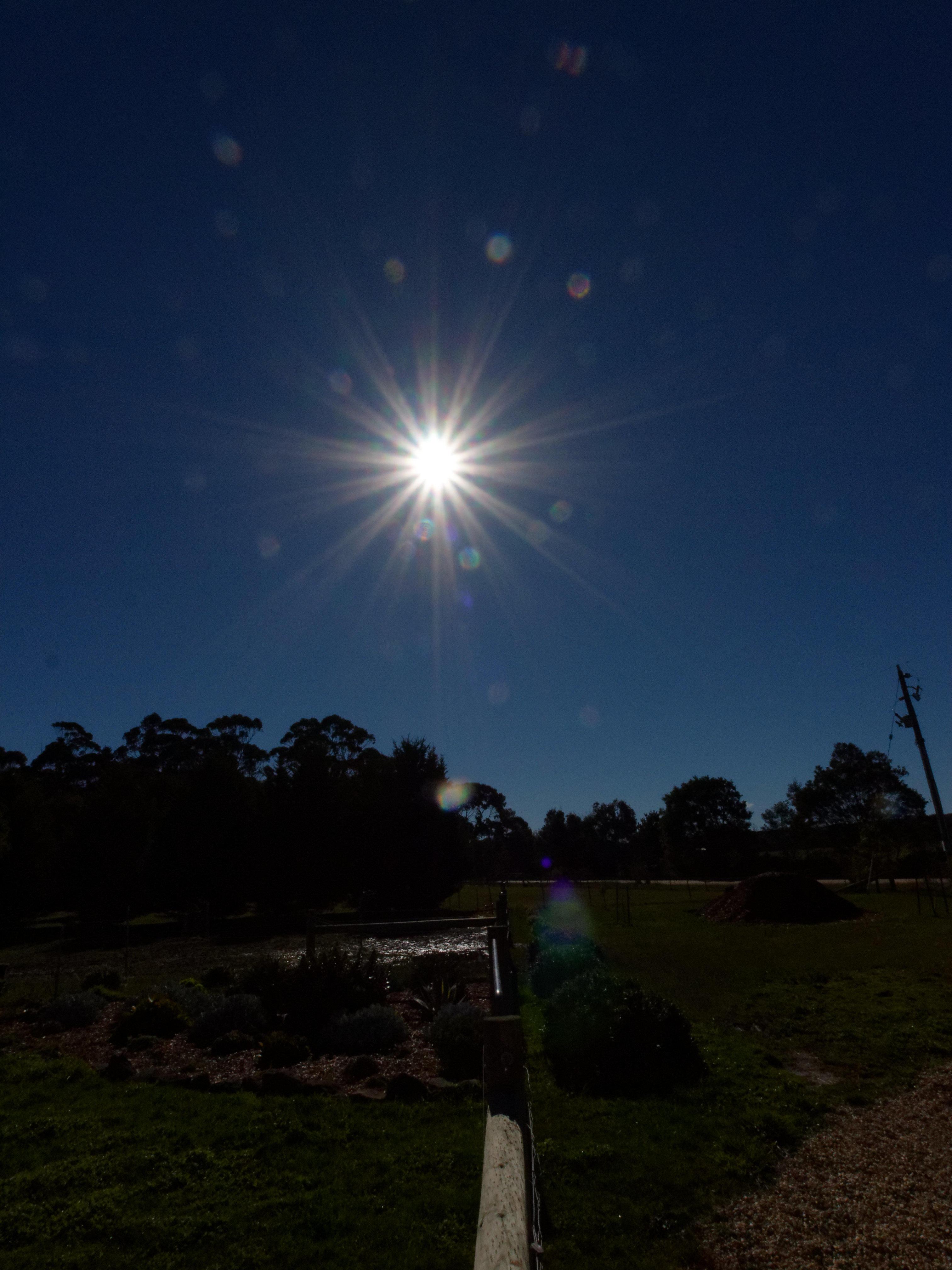 Sun-2.jpeg