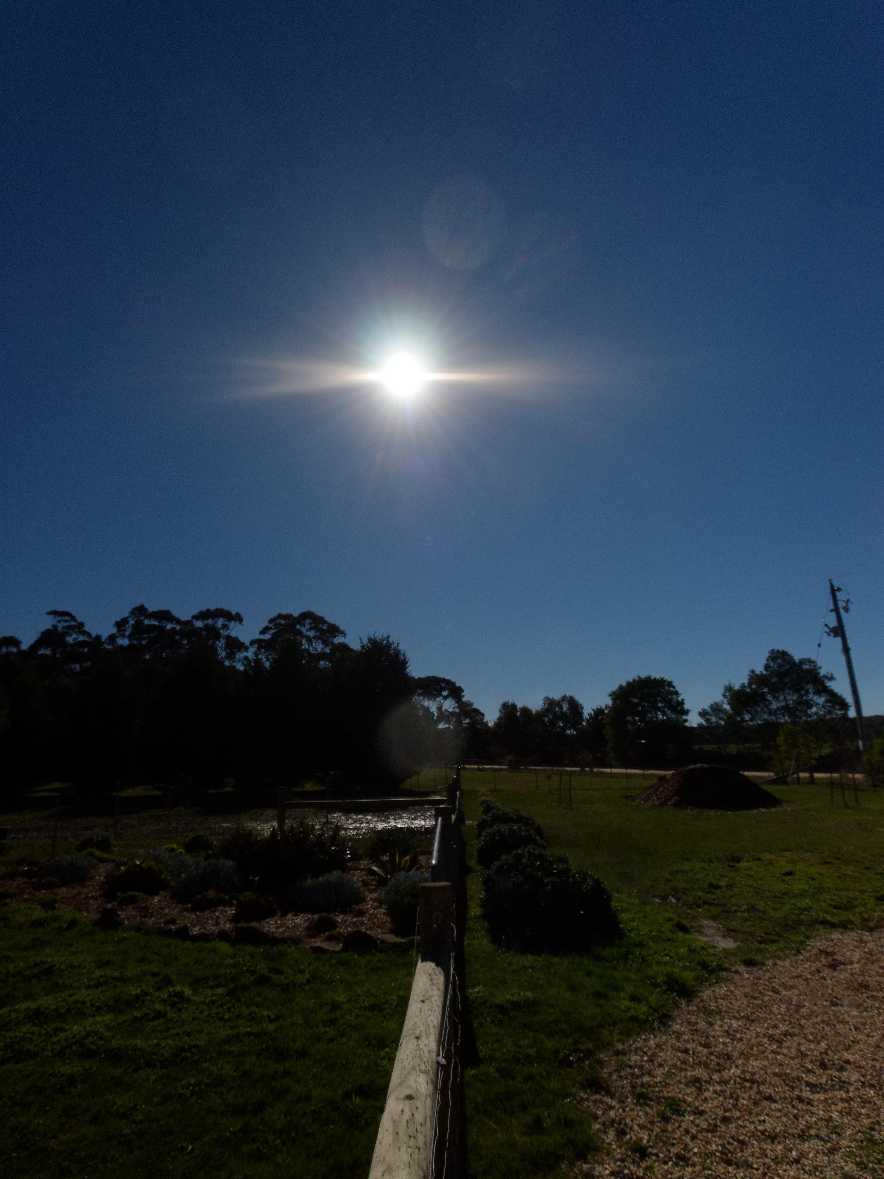 Sun-4.jpeg
