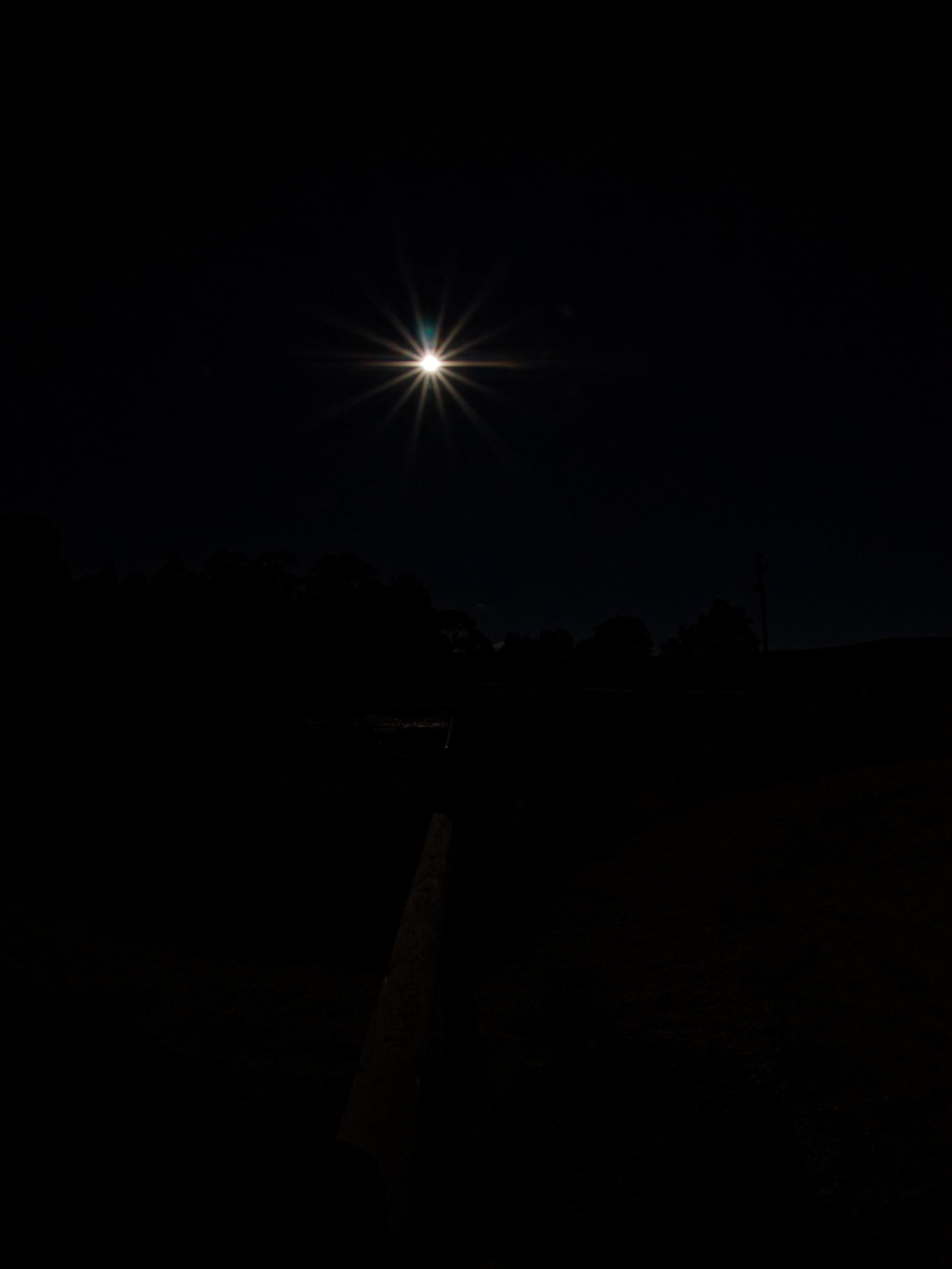Sun-8.jpeg