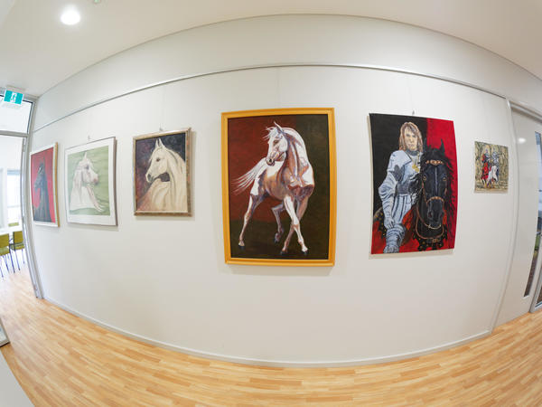 Paintings-fisheye-2.jpeg
