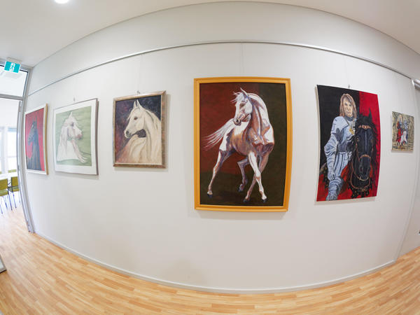 Paintings-fisheye-3.jpeg