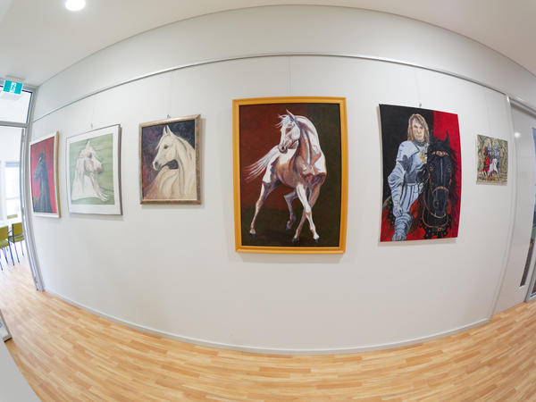 Paintings-fisheye-4.jpeg