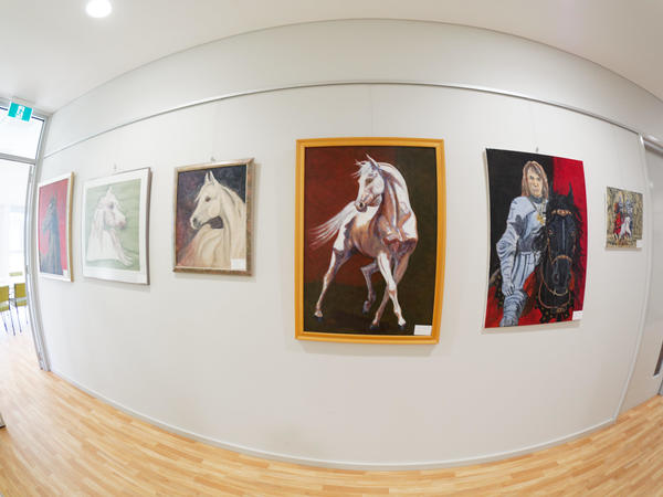 Paintings-fisheye-5.jpeg