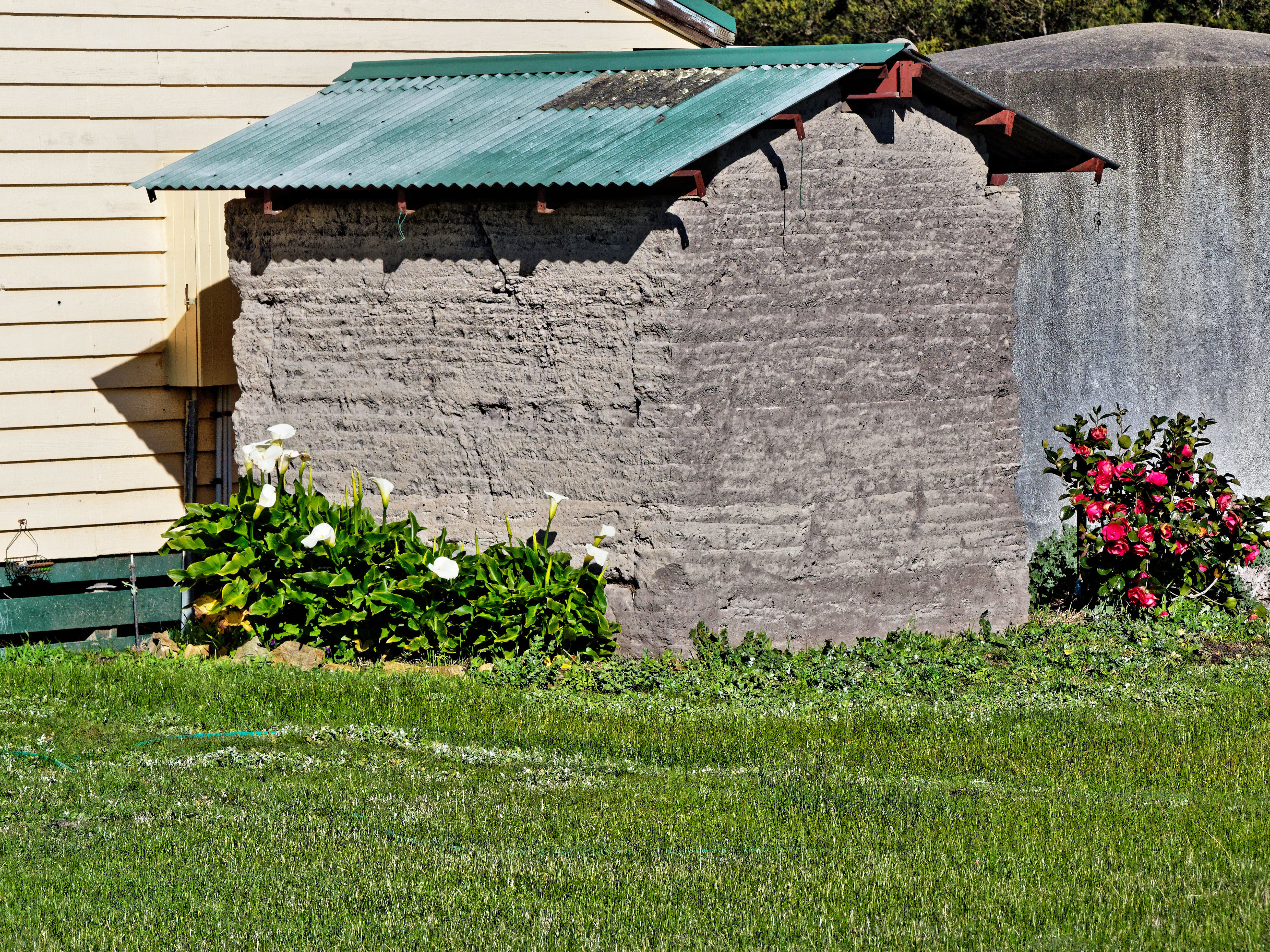 Neighbours-garden-3.jpeg