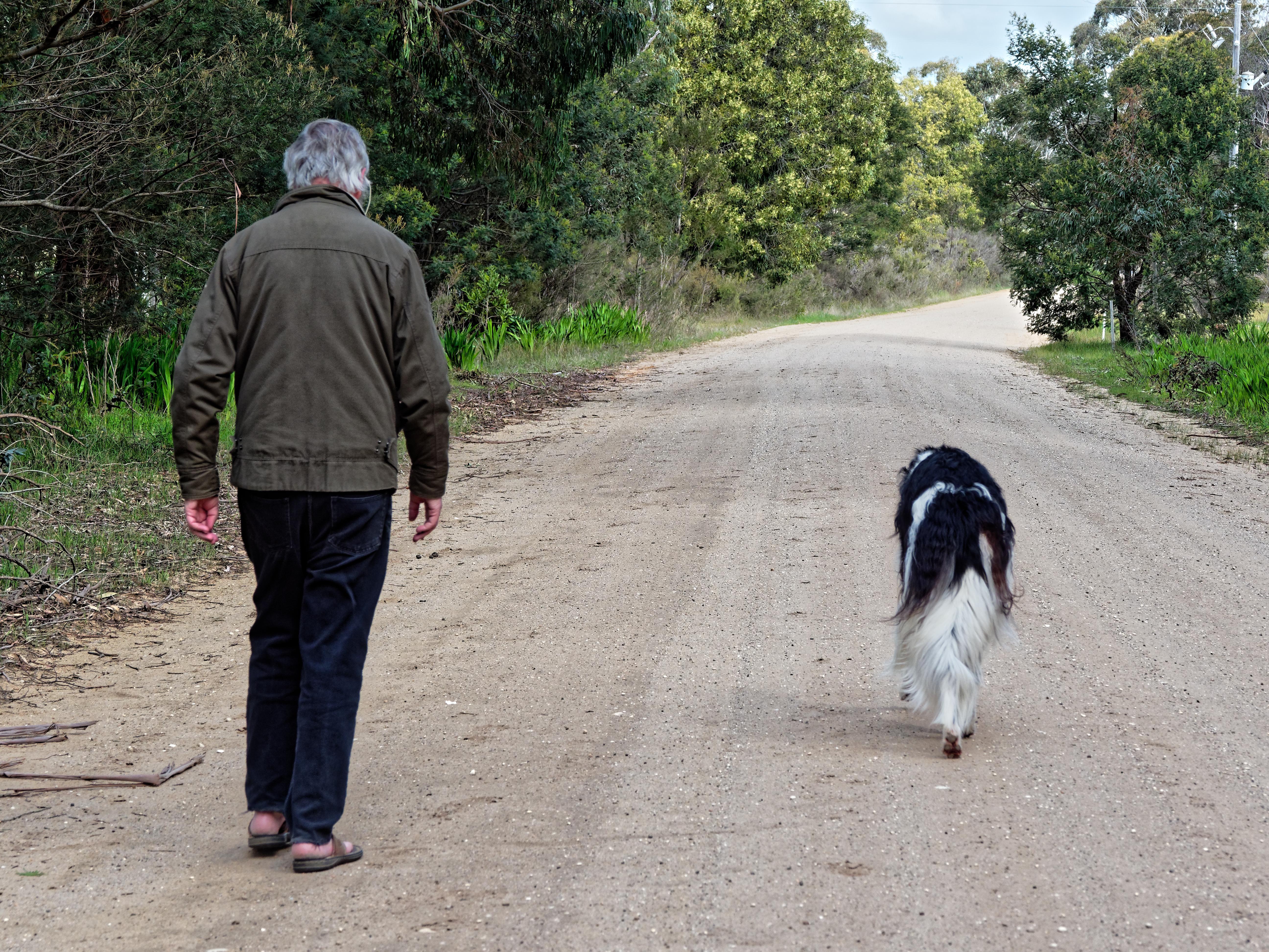 Greg-and-dogs-13.jpeg